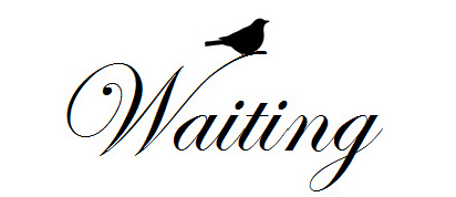 Waiting-Bird